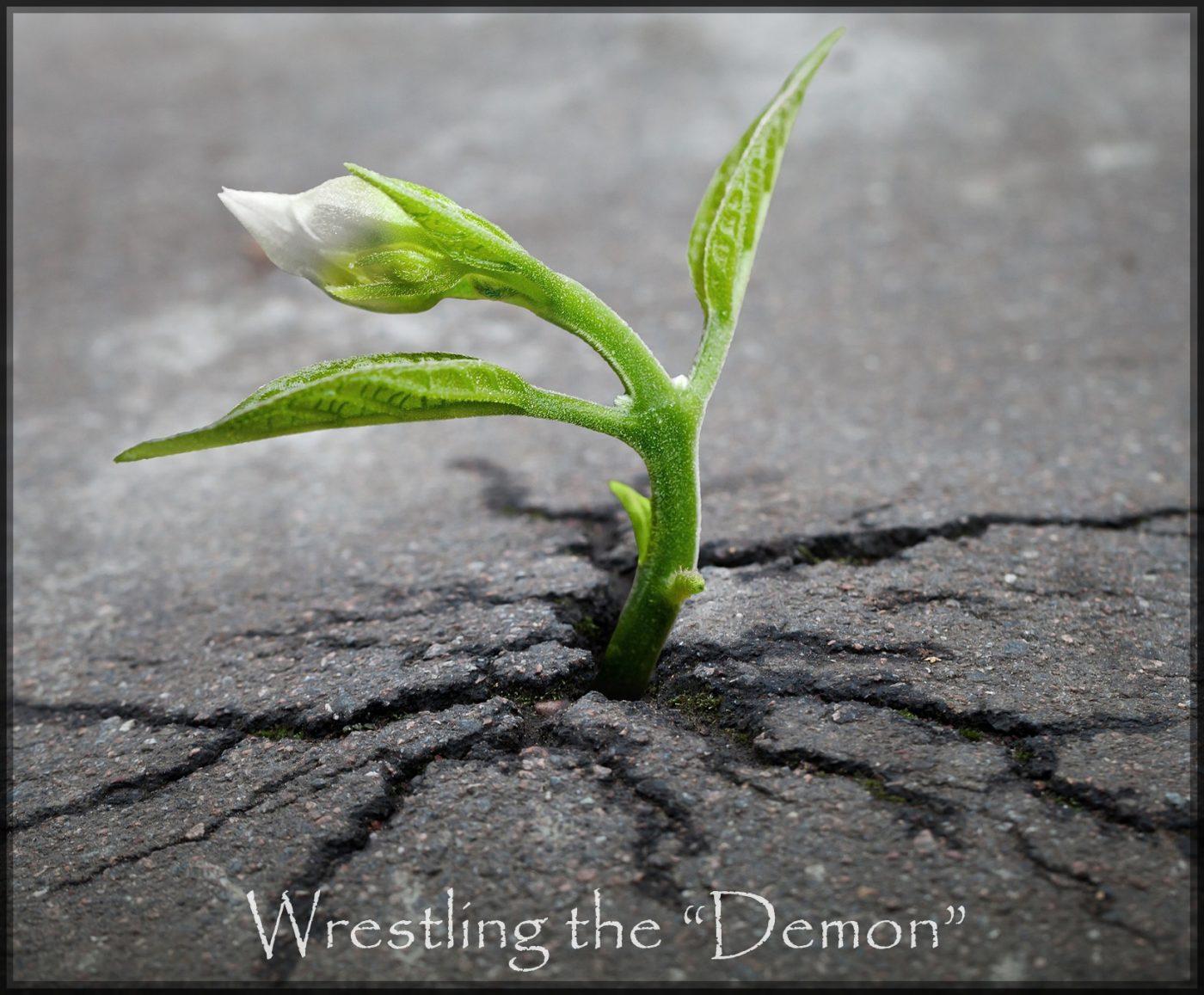 """Wrestling the """"Demon"""""""